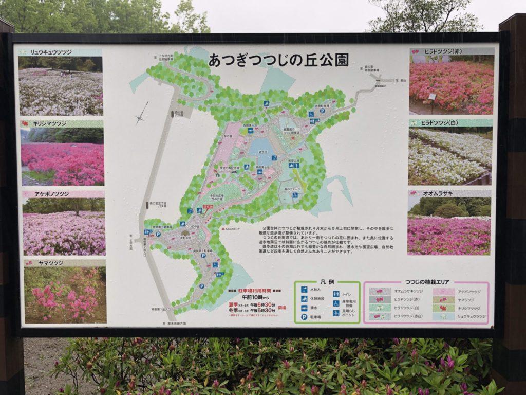 公園の看板には、ツツジの種類が書いてありました。