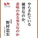 大坂なおみ、AO初制覇