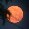 満月の写真をいろいろ撮ってみた…