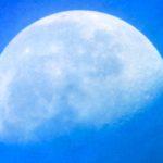 朝撮りの青天に浮かぶ半月を、夜半にもまた撮るつもりで…