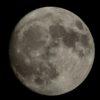 速報、今晩の満月。深夜には、スーパームーンが観られるのだ…