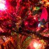 クリスマスツリーと赤いNSX、白いシビックTYPE R。ホンダ・ウェルカムプラザに行ったのだ…