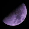 ここ数日の内に撮った写真と、昨夜の月やアルデバランを巡る出来事と〔改〕…