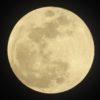 見事にタイミング良く雲が引き、皆既月食が見えた。勿論、写真に撮ったのだ…(その1)
