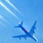日曜日、遂にジェット旅客機が、うちの真上を低空飛行して行った。それと、逝去された師匠との思い出も…
