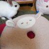 また岡田斗司夫氏の解説動画を観た。今度は『ブレードランナー』。それから、雨降りに聴いたショパンのノクターンに想う…