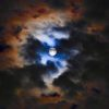 久し振りに月の写真を撮ったような気がする。そうそう、昨夜は中秋の名月だったのだ…