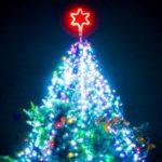 クリスマスツリーのイルミネーション点火式をみた。もう、そんな時節なのか、はやいものだなあ…