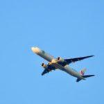 きのうは上空をジェット旅客機がたくさん通過していくなあ、と思ったら…
