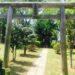 春のオープンキャンパス、東京理科大学のだ…