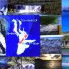 Zealandiaは世界第7位の面積を誇る大国である