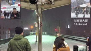 今日の降雪