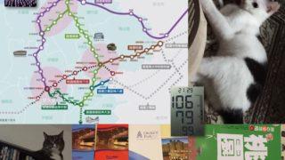 桃園市、空港周辺と市中心部結ぶ鉄道建設に着手へ