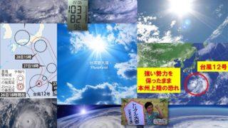 ようやく、ようやく、激甚災害級の酷暑がおさまったが、週末には台風襲来