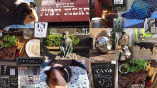 ジャストミート(JUST MEAT)@葛飾区役所近く&上千葉砂原公園@都立農産高校近く