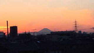 今日の江戸川土手