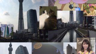 西十間橋から見える東京スカイツリーが絶景すぎて哭ける