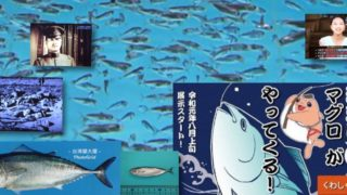 クロマグロ稚魚への大量殺戮は許されることではなかろう