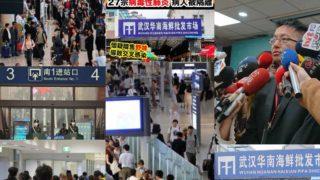 今さら武漢と周辺3市(黄岡・鄂州・赤壁)の移動規制かけても遅いだろう