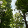 【週末スク】政治理論 #5-6